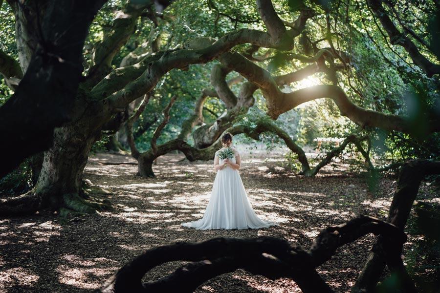 Die Braut im Wald